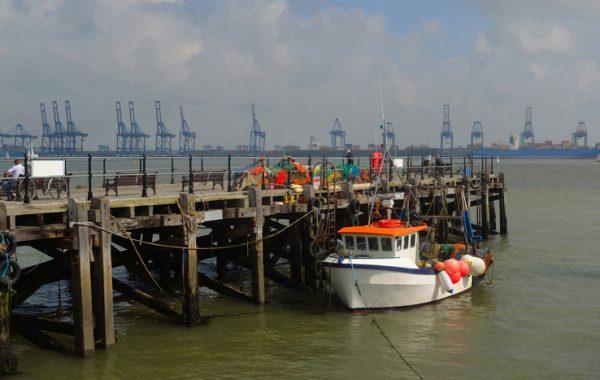 Harwich Haven Port Authority instructs Rapid Response to handle emergency repair works!